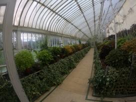 Botanic Garden Green House